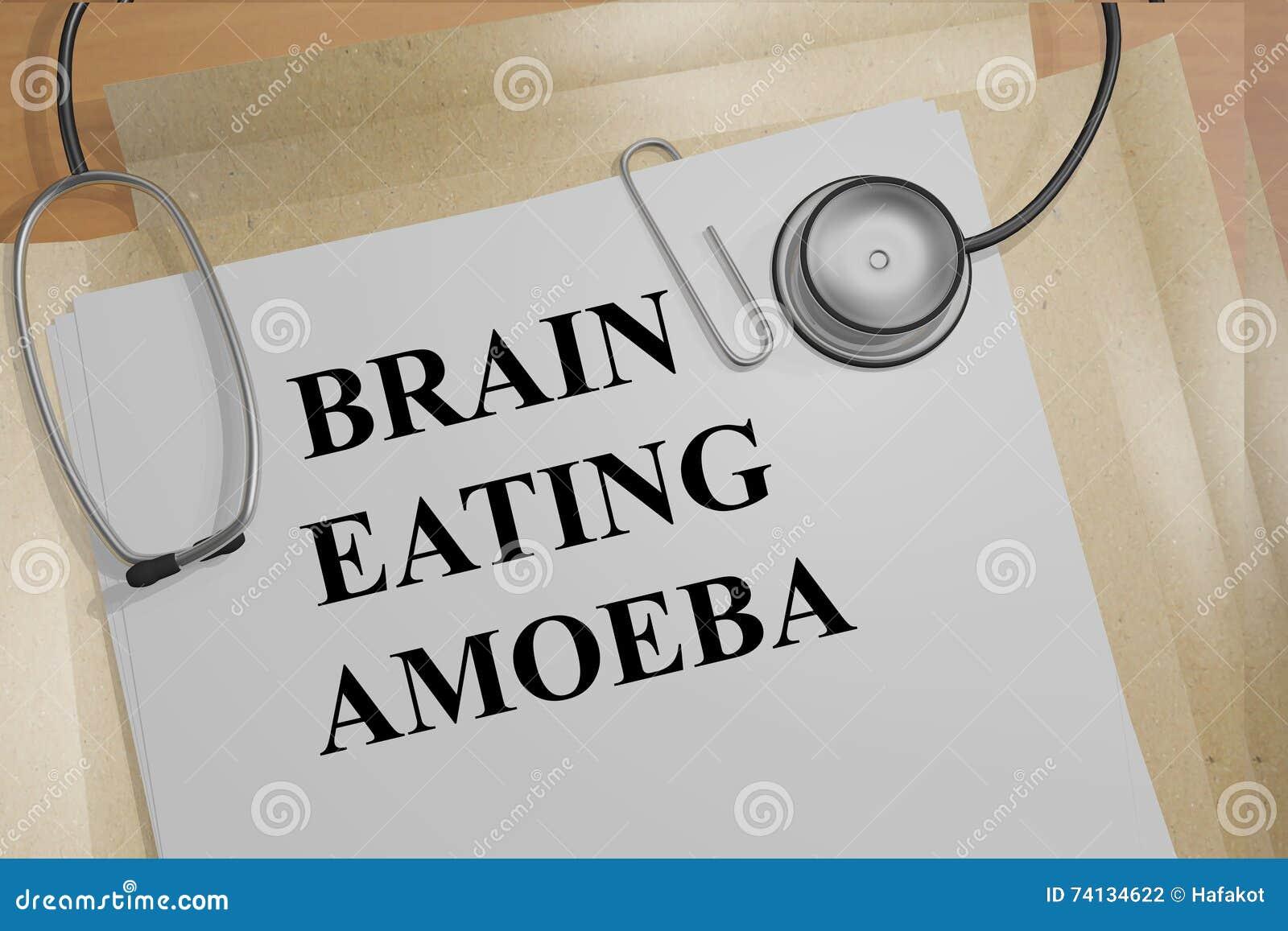 Brain Eating Amoeba begrepp