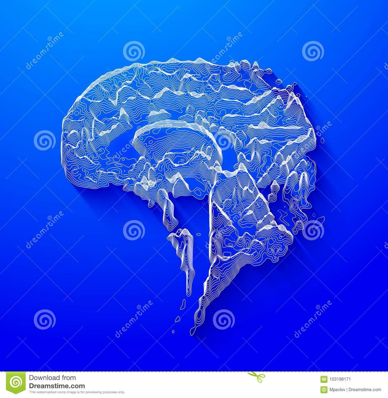 The Brain In The Form Of A Topographic Map The Concept Of Modern