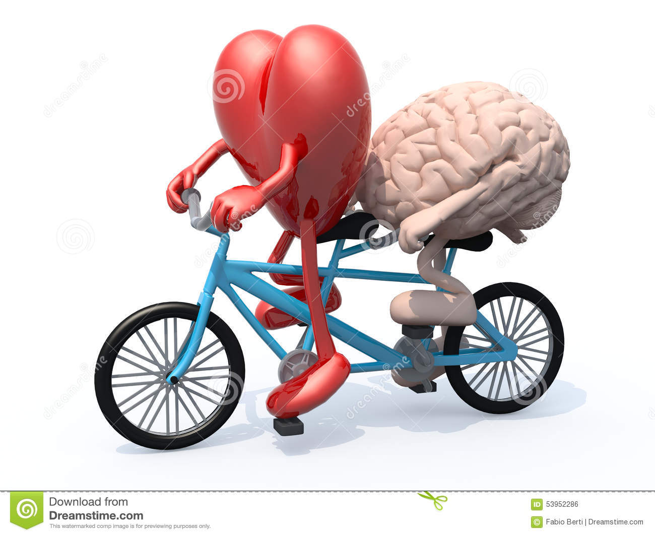 Brain And Heart Riding Tandem Bicycle Stock Illustration