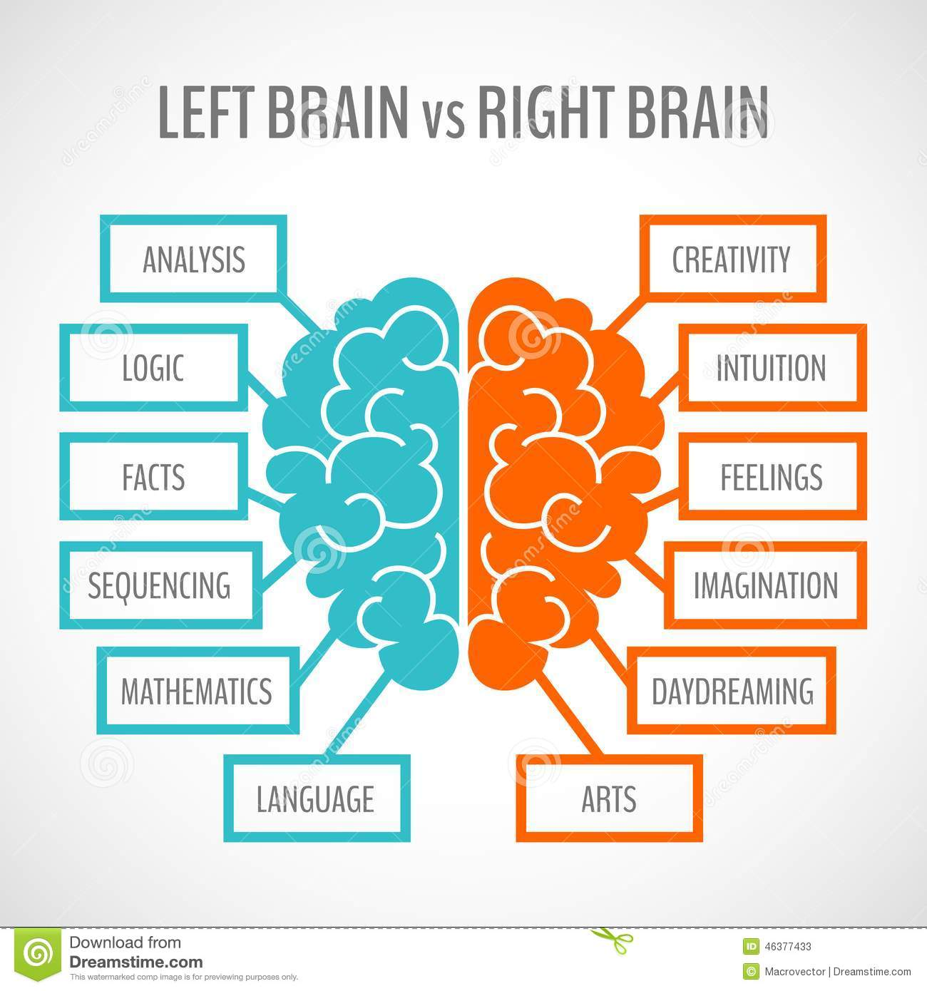 Left brain right brain research paper