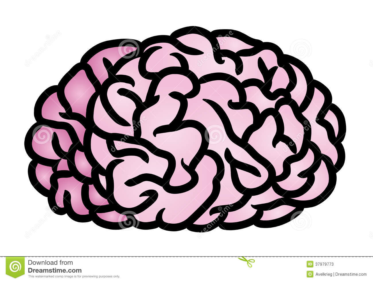 Stock Photos Brain Icon Image37979773 on wire icon
