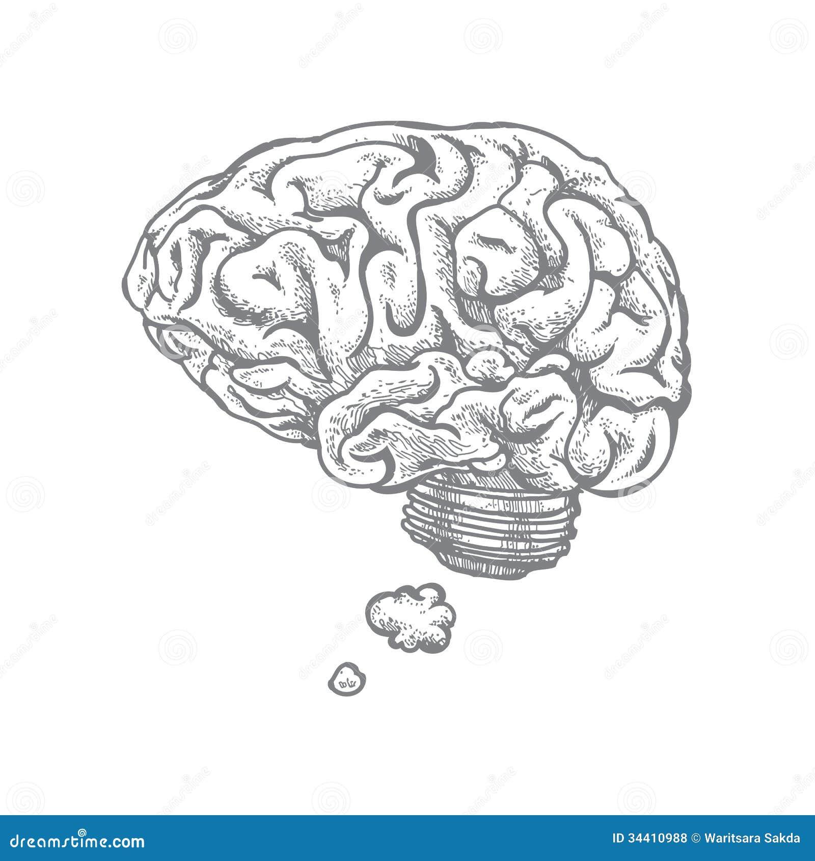 brain and idea royalty free stock photos