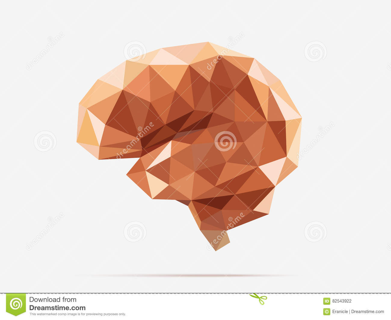 Brain low poly stock vector  Illustration of idea, effect - 82543922