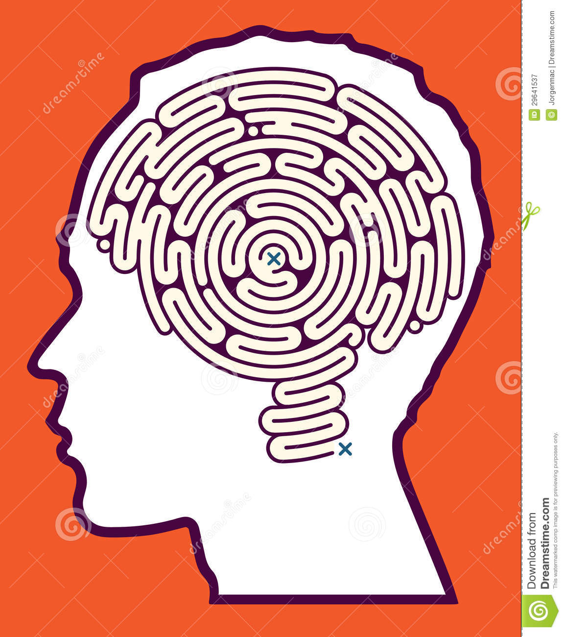... of an intriguing mind puzzle in the form of a brain shaped maze