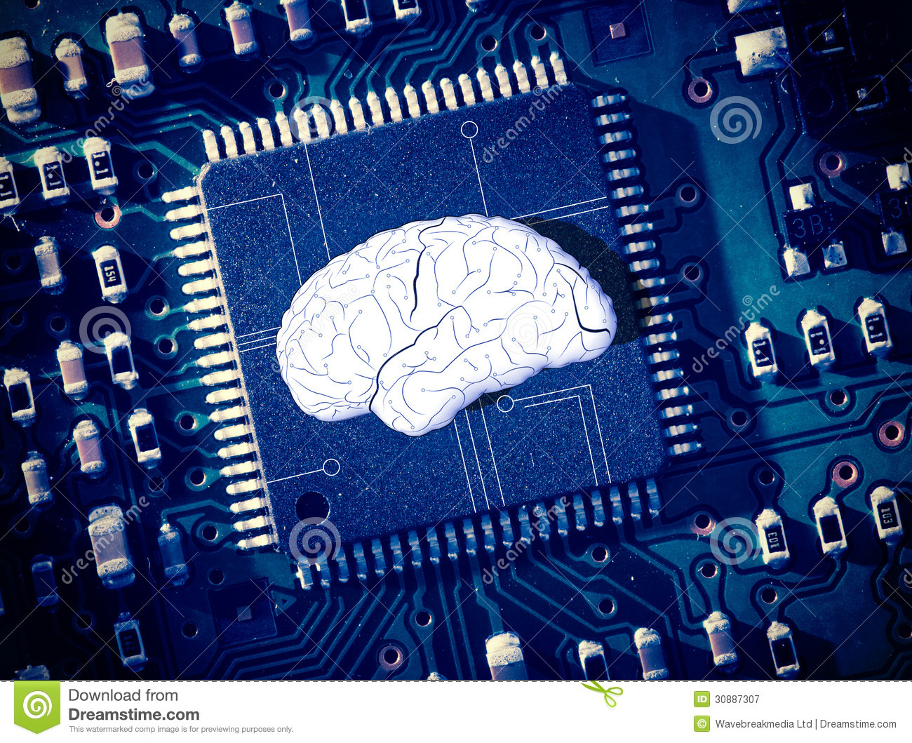 Circuit Brain Reusable : Brain in the middle of blue circuit board royalty free