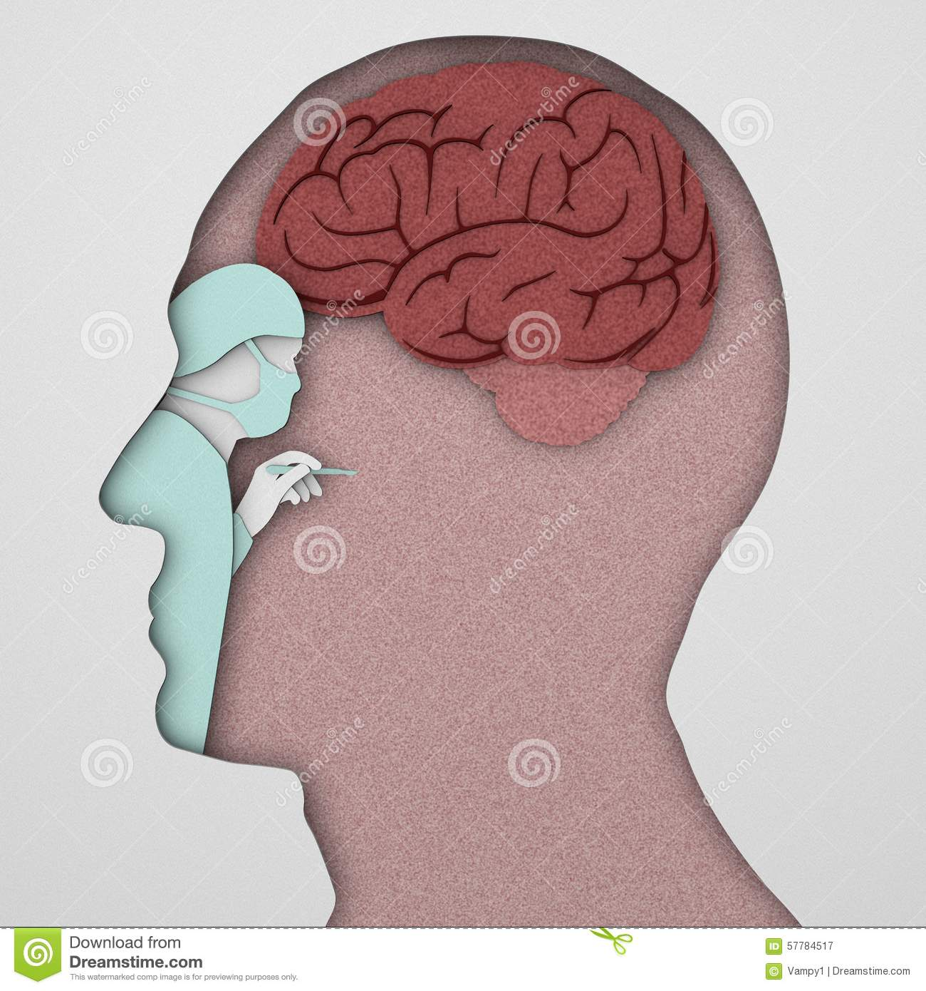 Brain Neurons Synapse, Anatomy, Head Profile, Stock Illustration ...