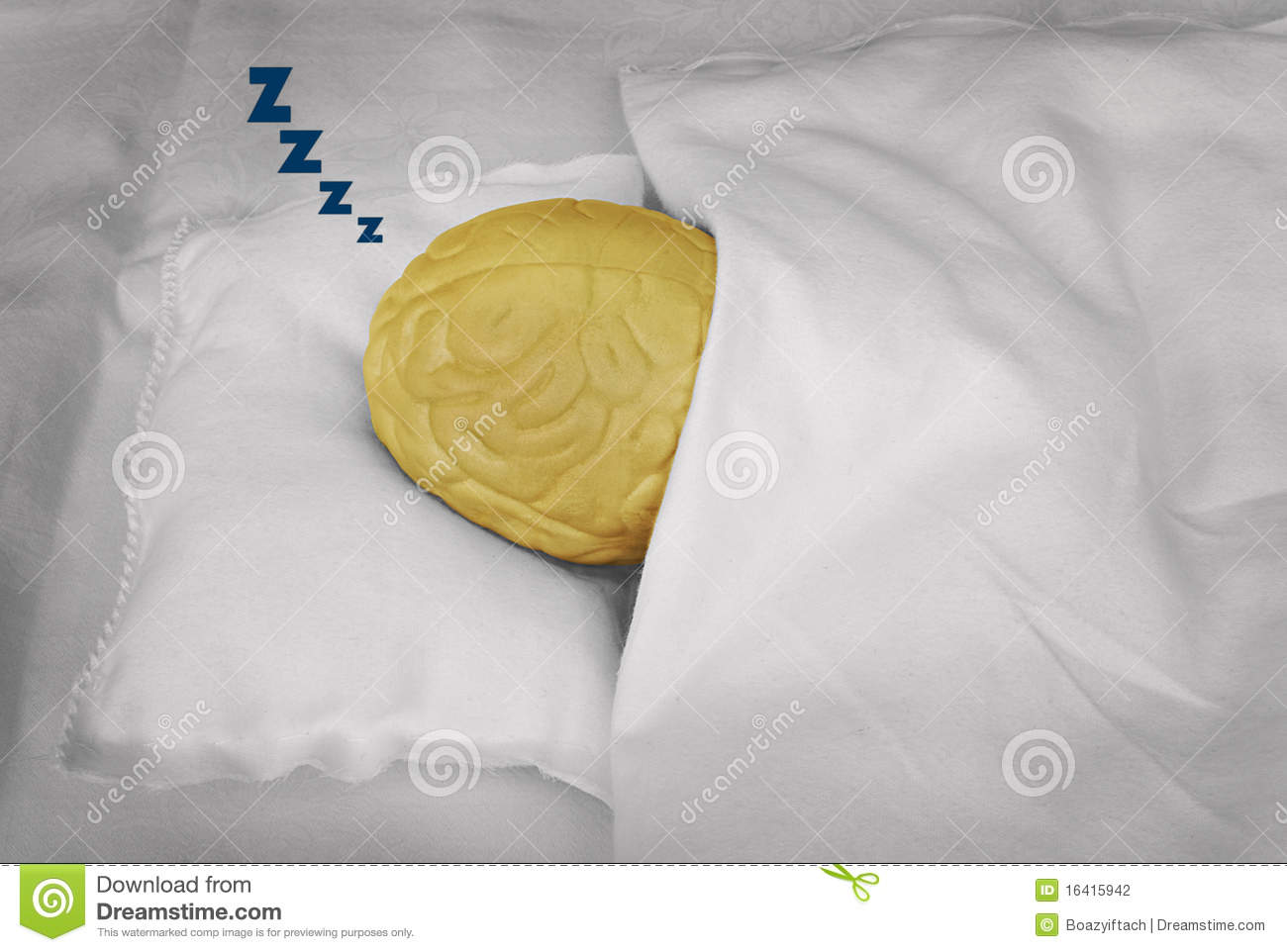 Brain Sleeping Stock Photo Image Of Rest Pillow Snooze