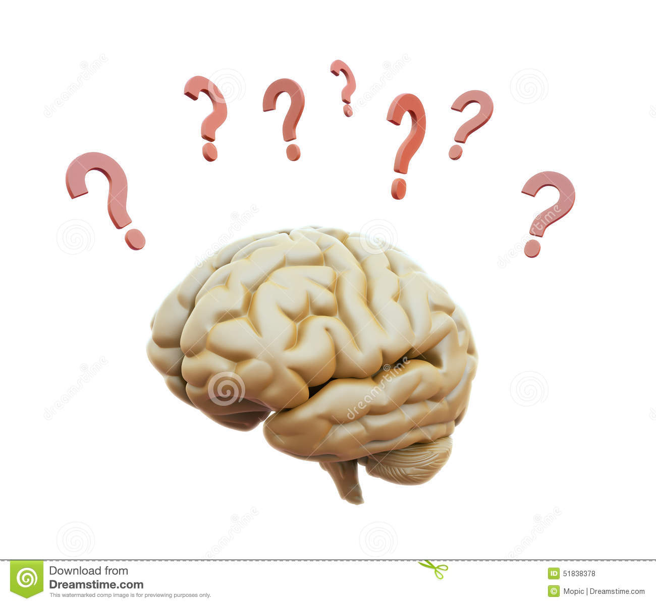 Brain Surrounded With Question Marks Stock Photo Image