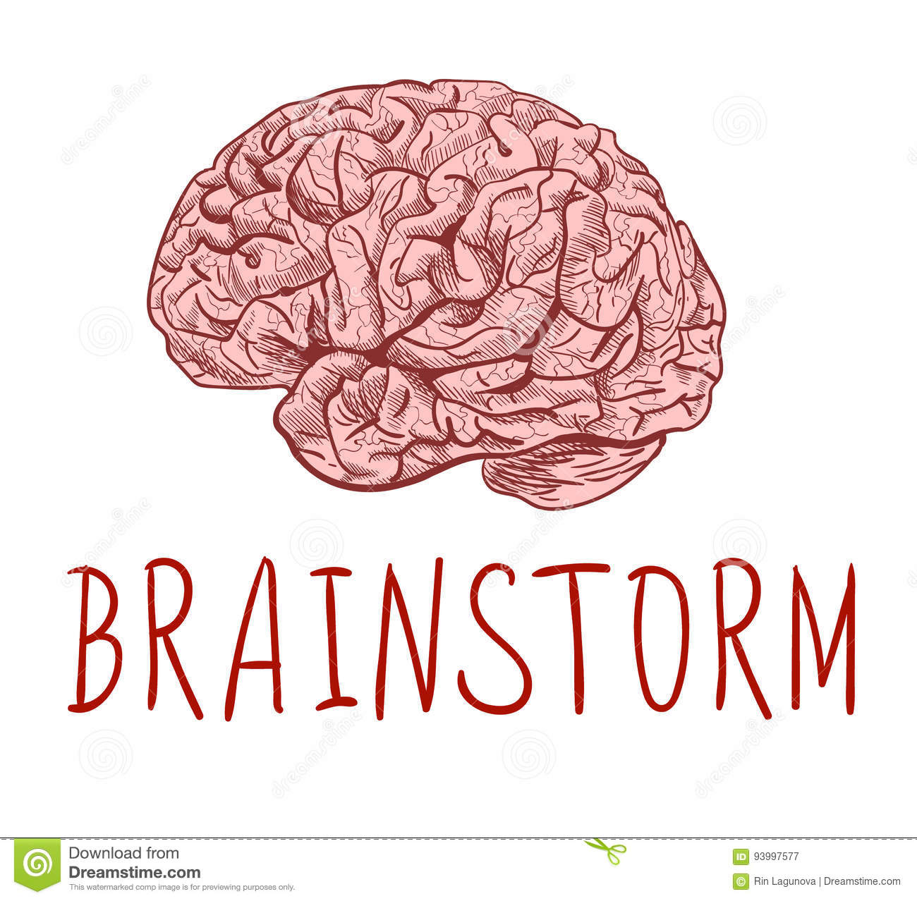 Brainstorm Handwritten Letters And Outline Drawing Of Human Brain