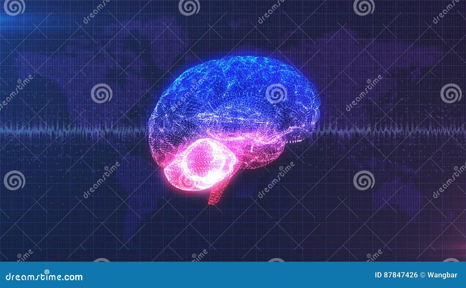 Brainstorm - pink, purple and blue brain with brainwave animation