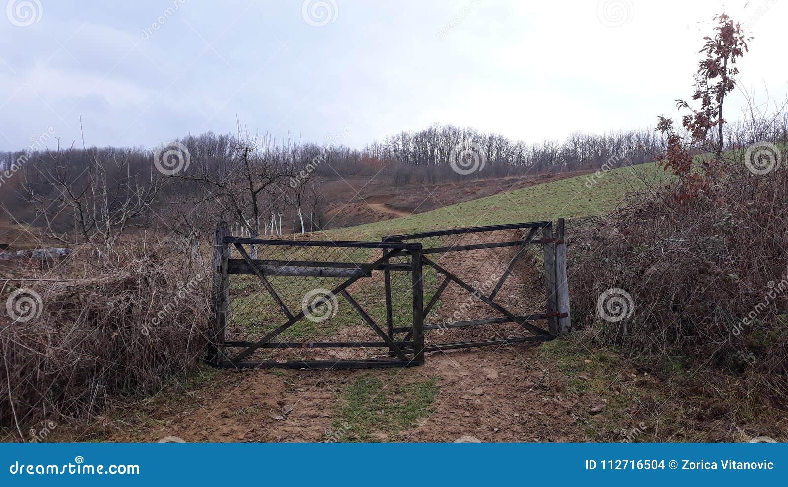 Brama na polu w wiosce