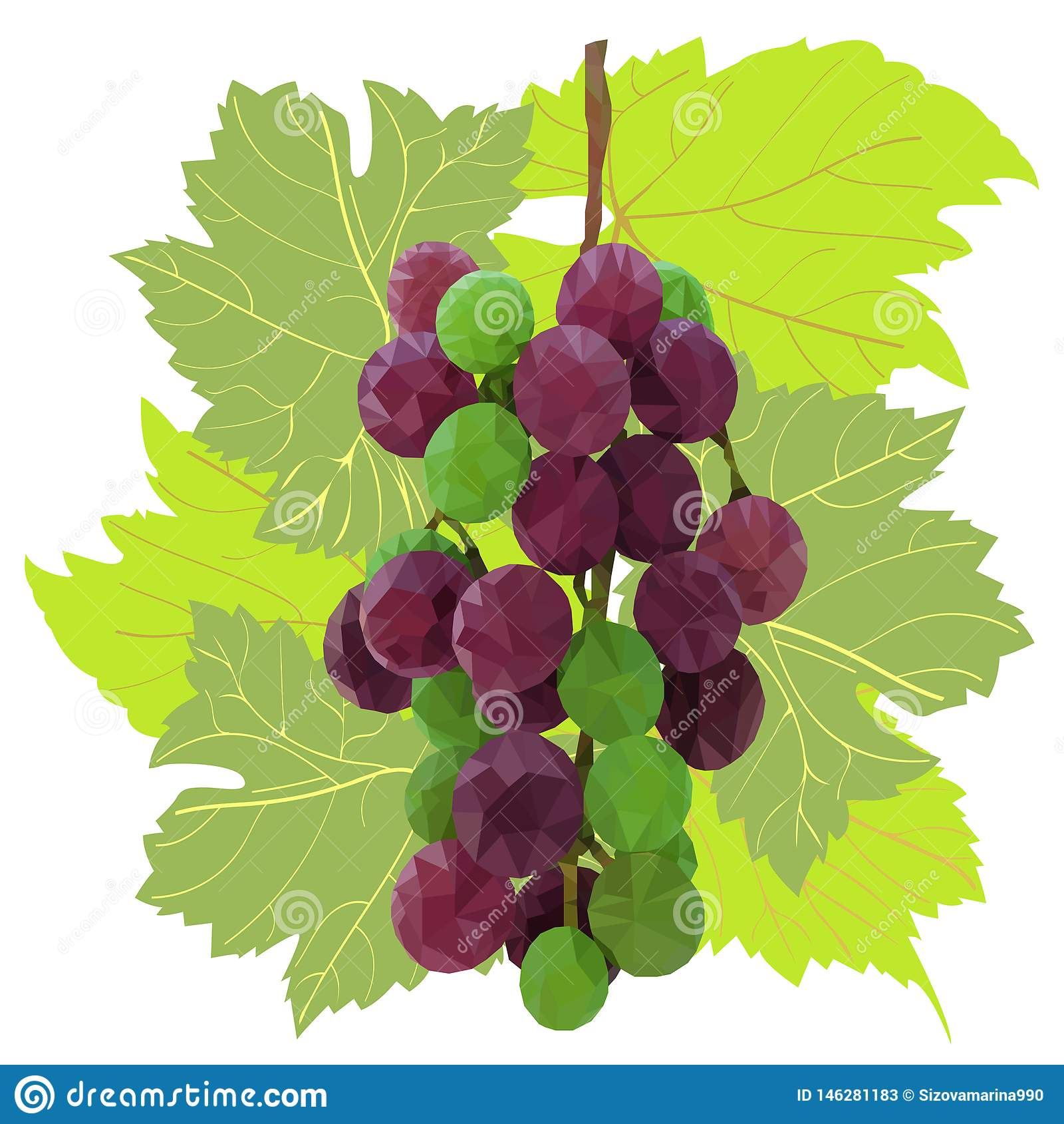 Branch of beautiful multi-colored low-poly grape framed by patterned leaves