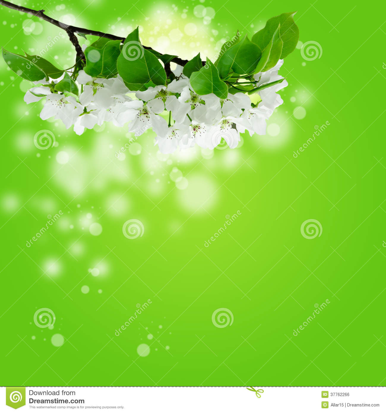 green spring background - photo #25
