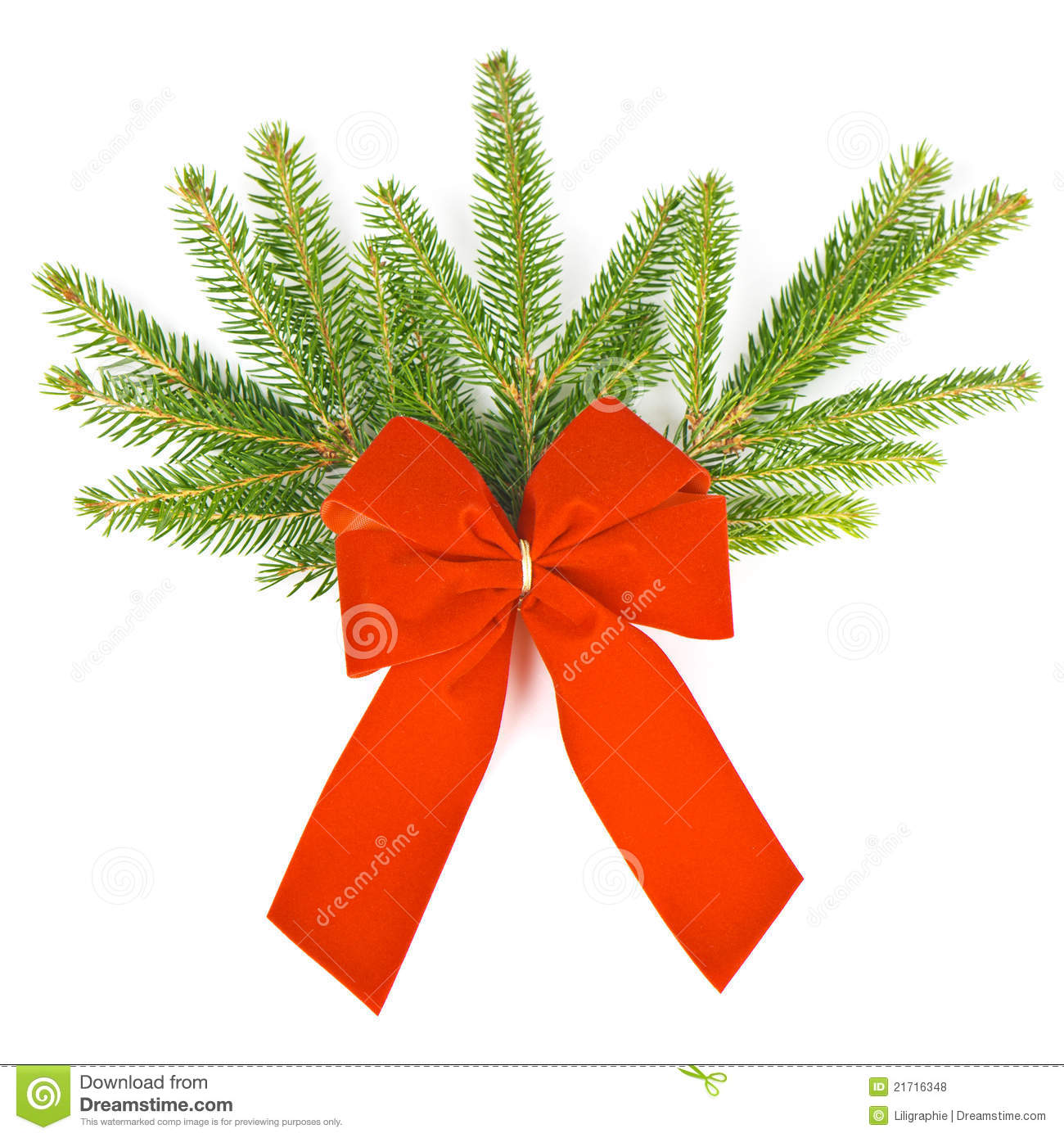 Christmas Tree With Red Ribbon: Branch Of Christmas Tree With Red Ribbon Stock Photo