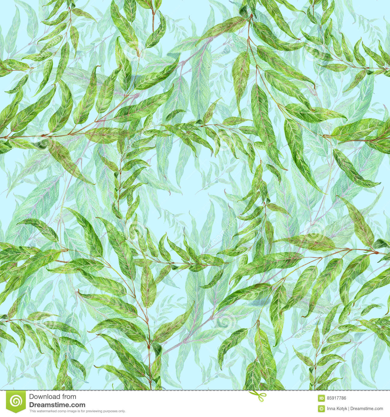Branch With Leaves - Drawing With Colored Pencils. Eucalyptus ...