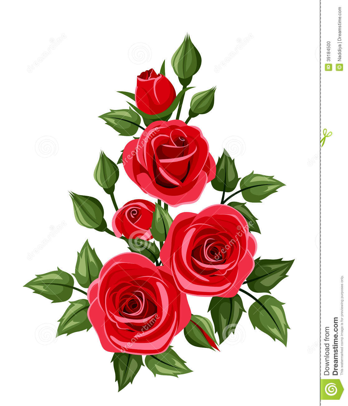 Branch Of Red Roses Vector Illustration Stock Vector