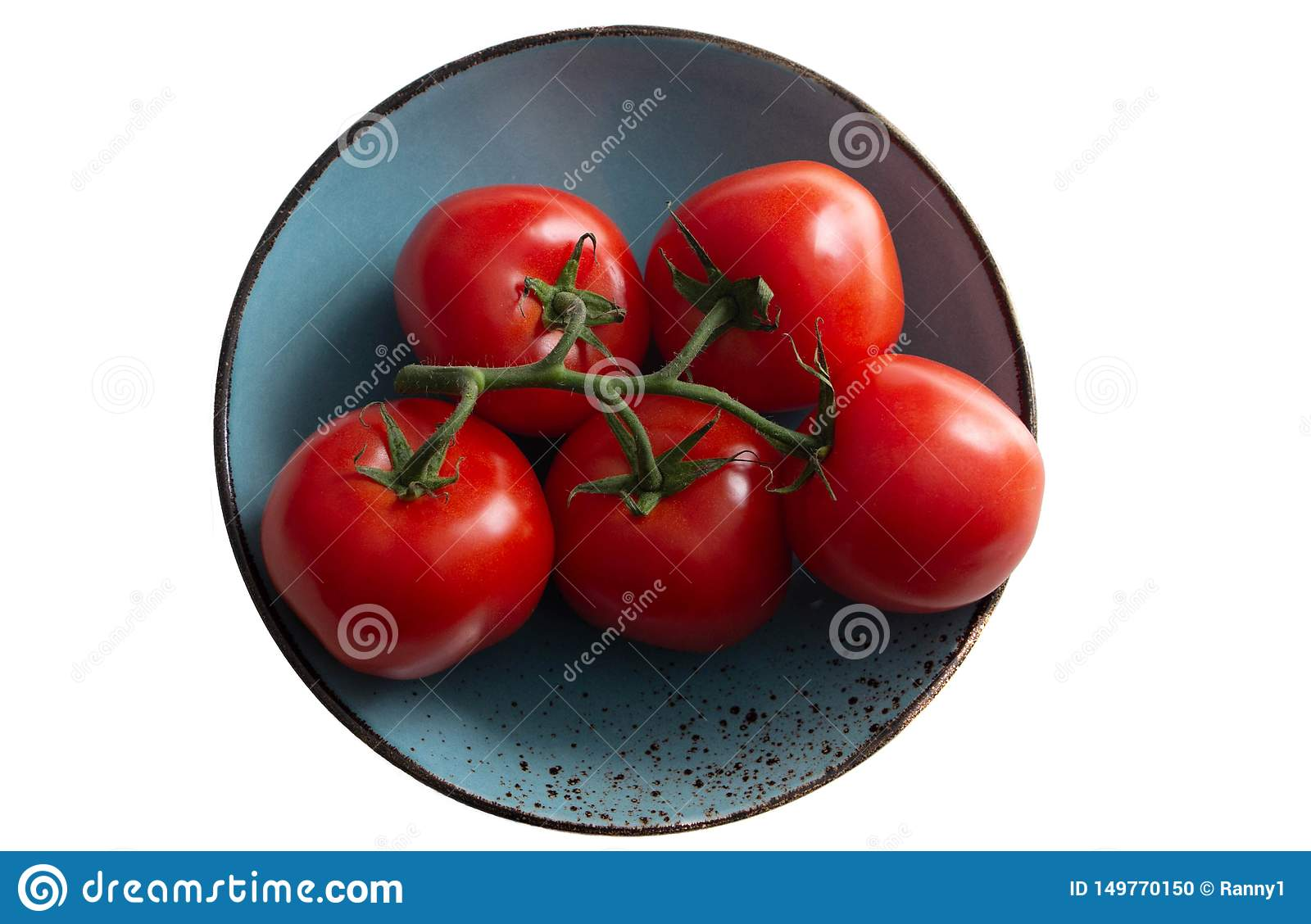 A branch of tomato on a sea-green plate, a turquoise plate. Isolated object