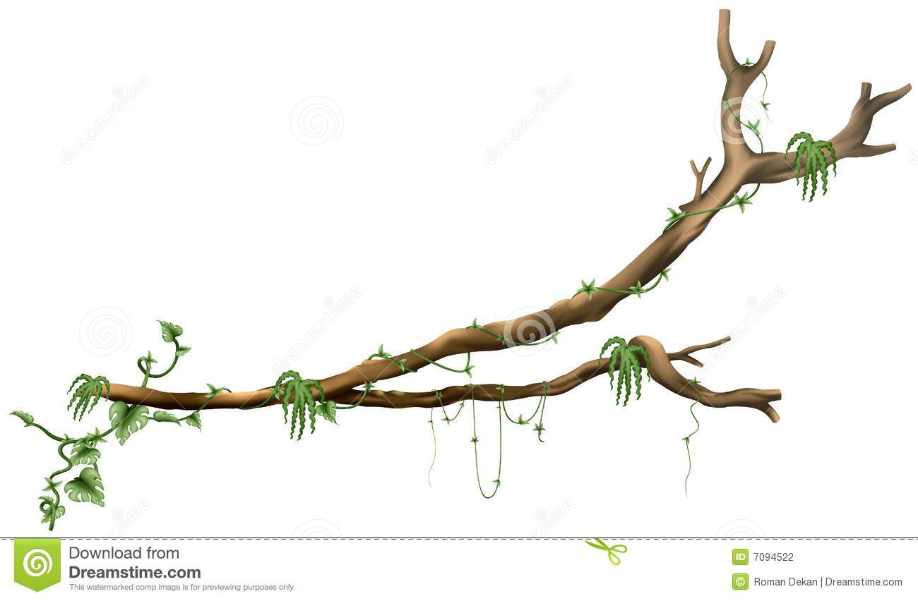 Branch Tree A02 - isol...