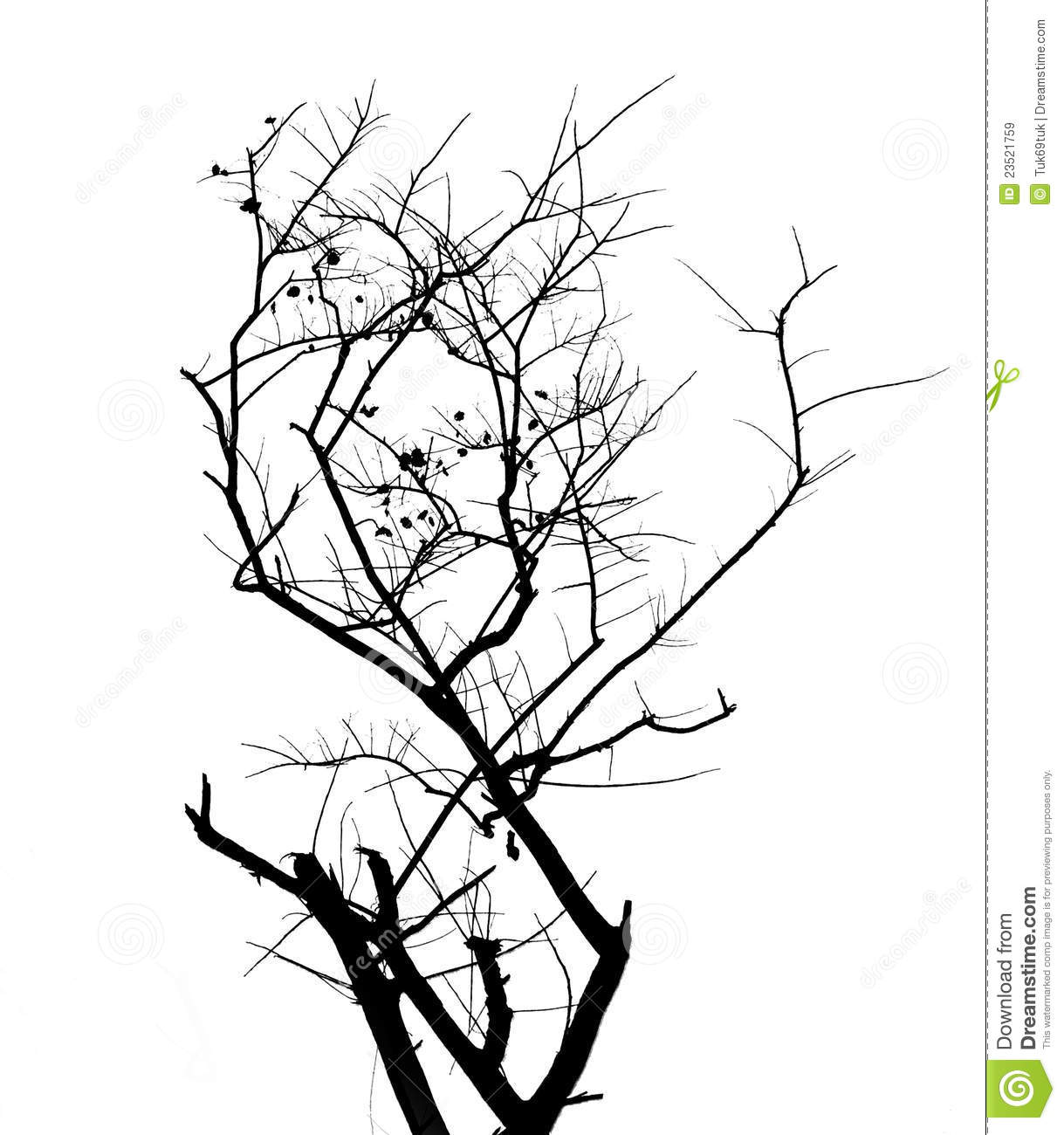 Branches amp Silhouette Vector Images over 25000