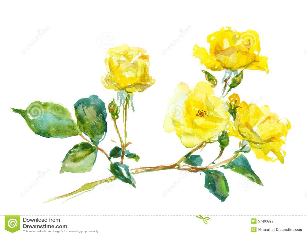 Rose Elegance™ Premium Long Stem Yellow Roses | 1-800 ...