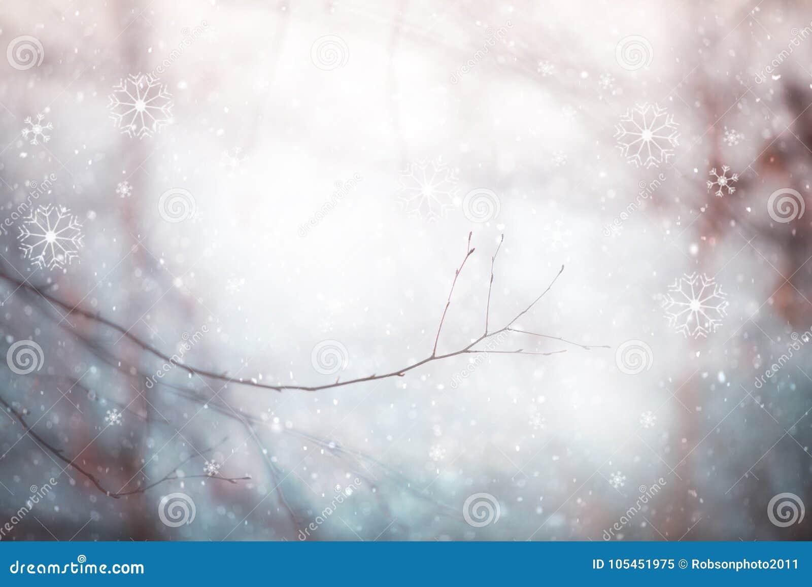 Branche d arbre brumeuse brouillée par résumé magique