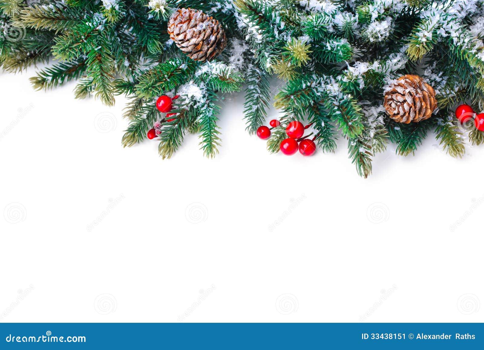 Branche d 39 arbre de sapin d 39 isolement sur le blanc image for Branche de sapin deco noel