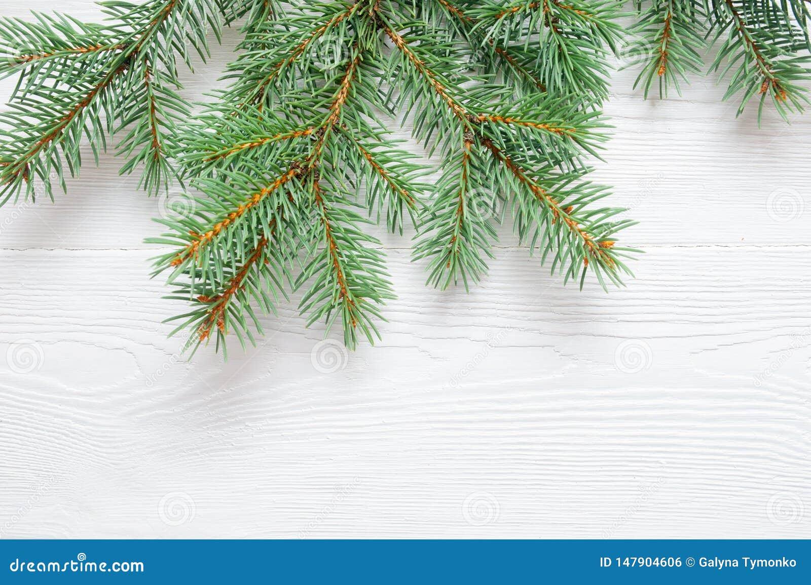 Arbre Bois Blanc Decoration branche d'arbre de sapin de noël d'isolement sur le fond en