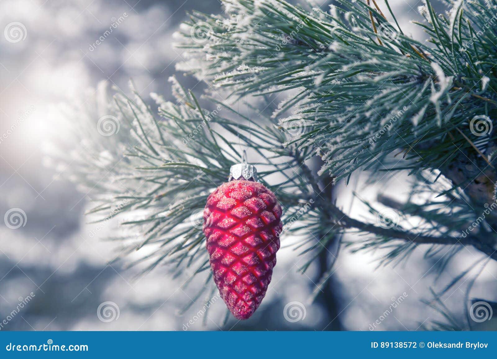 Branche Dextérieur Darbre De Noël Décorée Du Noeud De Pin