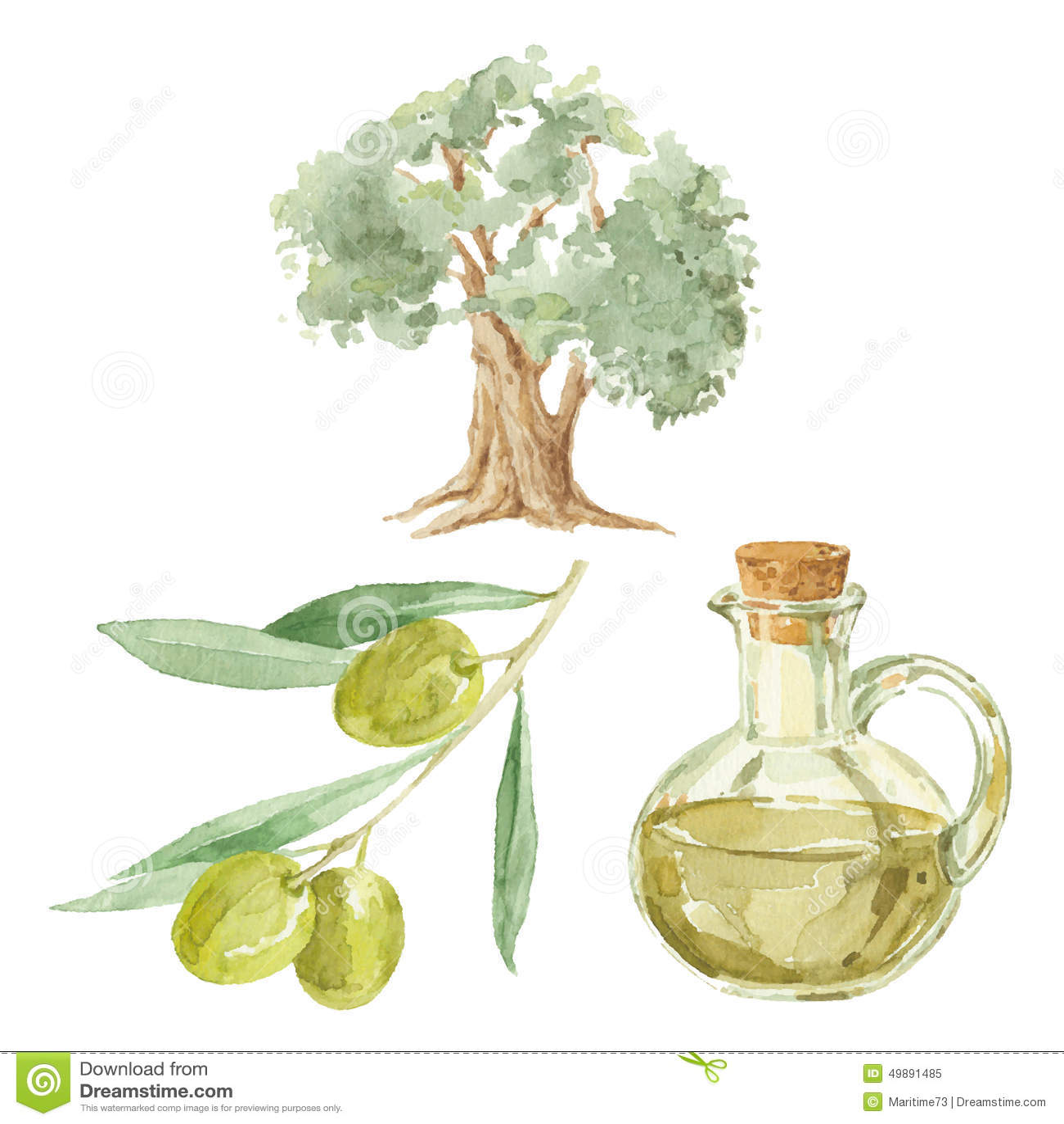 branche d 39 olivier arbre et une bouteille du dessin d 39 huile d 39 olive par le waterc illustration. Black Bedroom Furniture Sets. Home Design Ideas