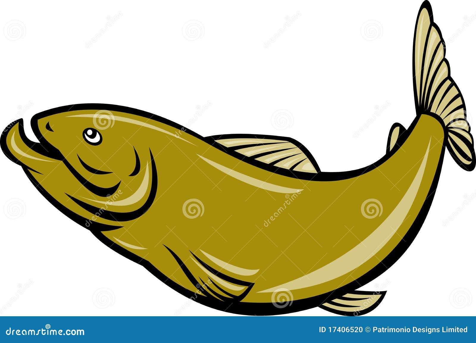 Brancher de poissons de truite de dessin anim - Dessin truite ...