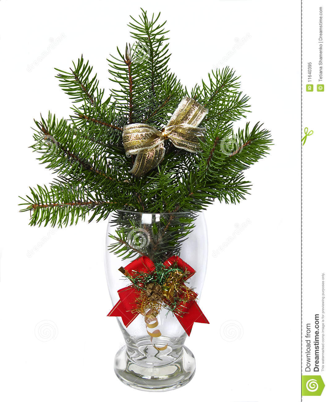 Branches Of The Fir Tree In Glass Vase Stock Image Image 11640395
