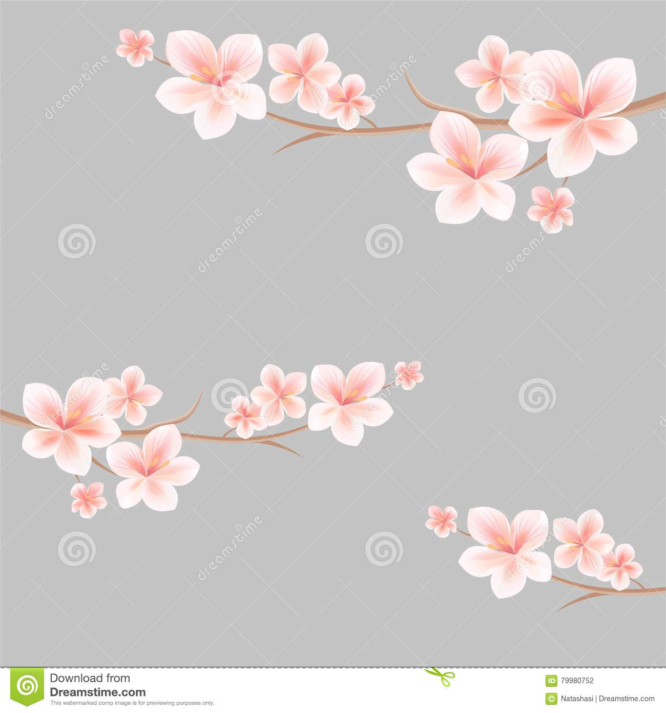 Branches of sakura with light Pink White flowers on light grey background. Apple-tree flowers. Cherry blossom. Vector