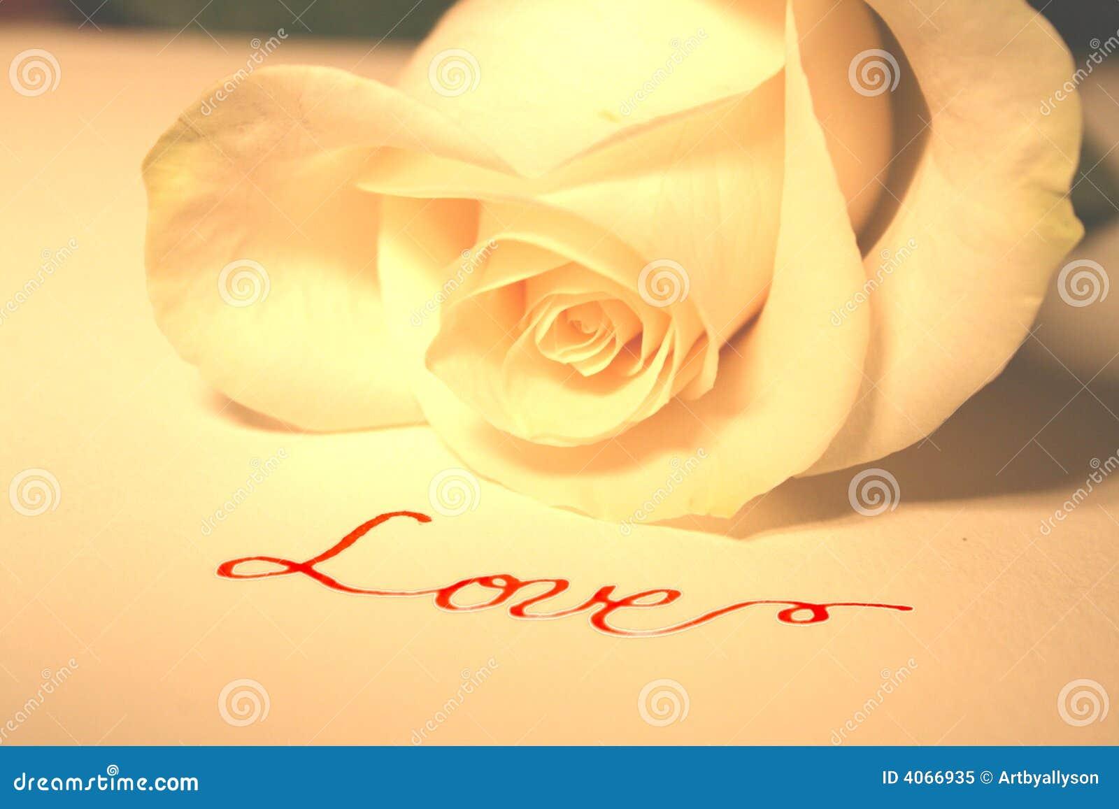 Branco cor-de-rosa e amor