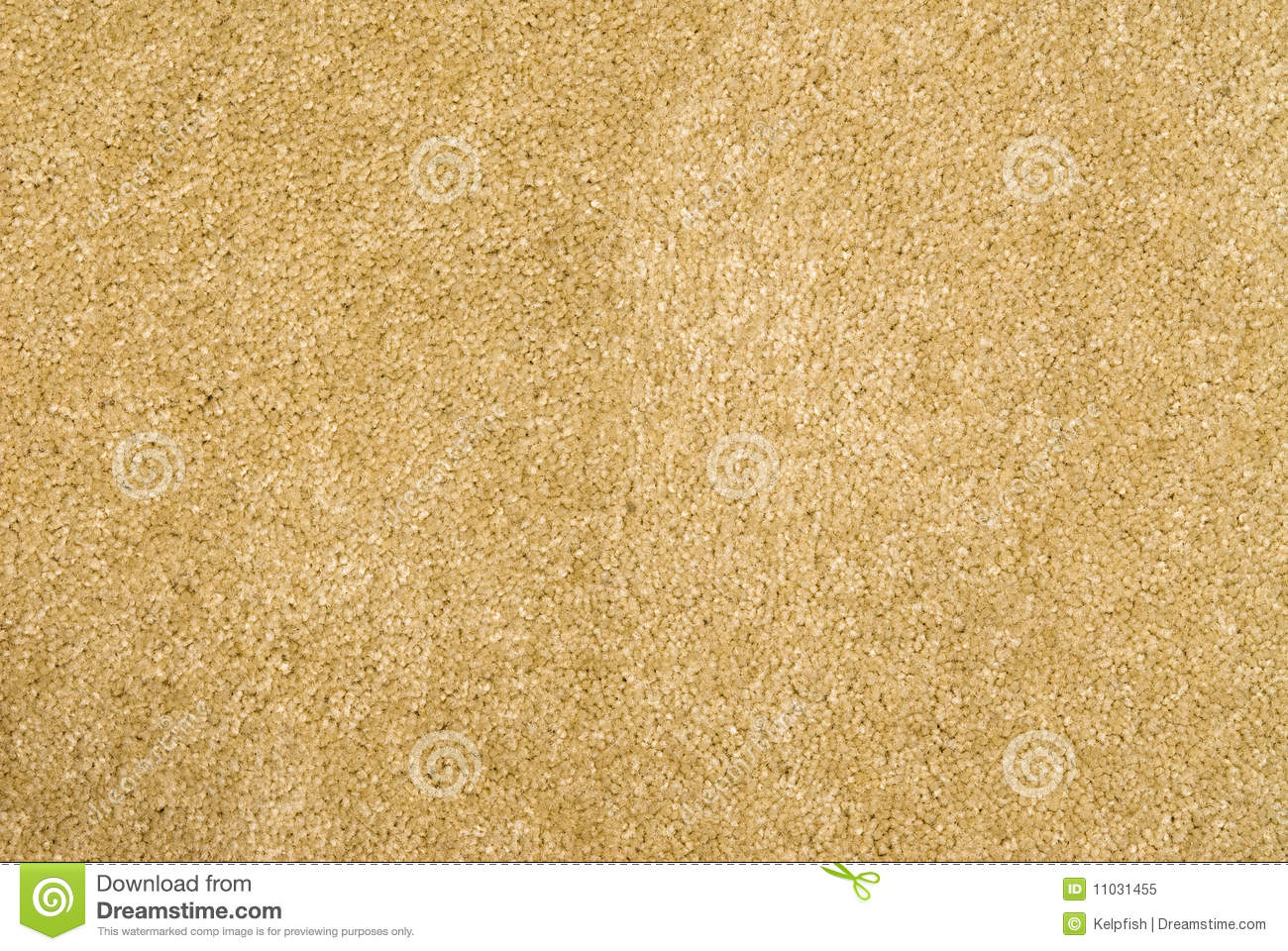 Brand new beige carpet royalty free stock photography for Best carpet brands to buy