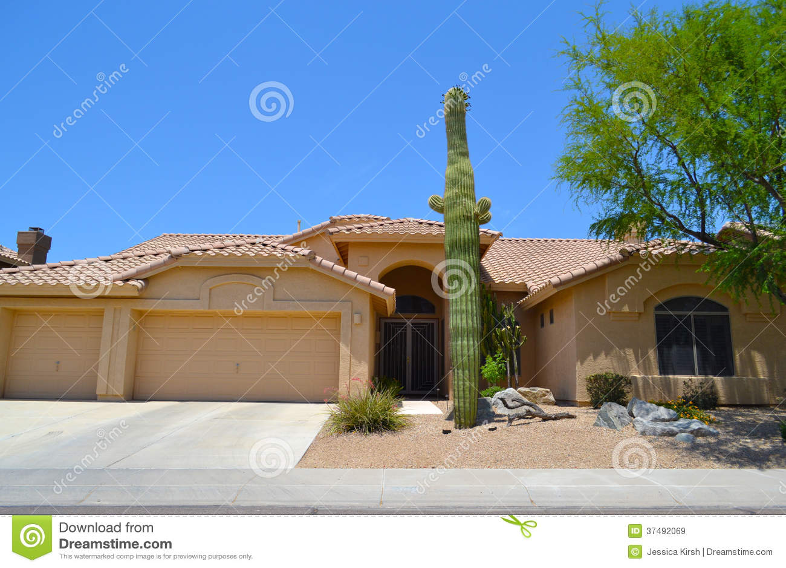 Beautiful One Story Mediterranean Style Southwestern Home