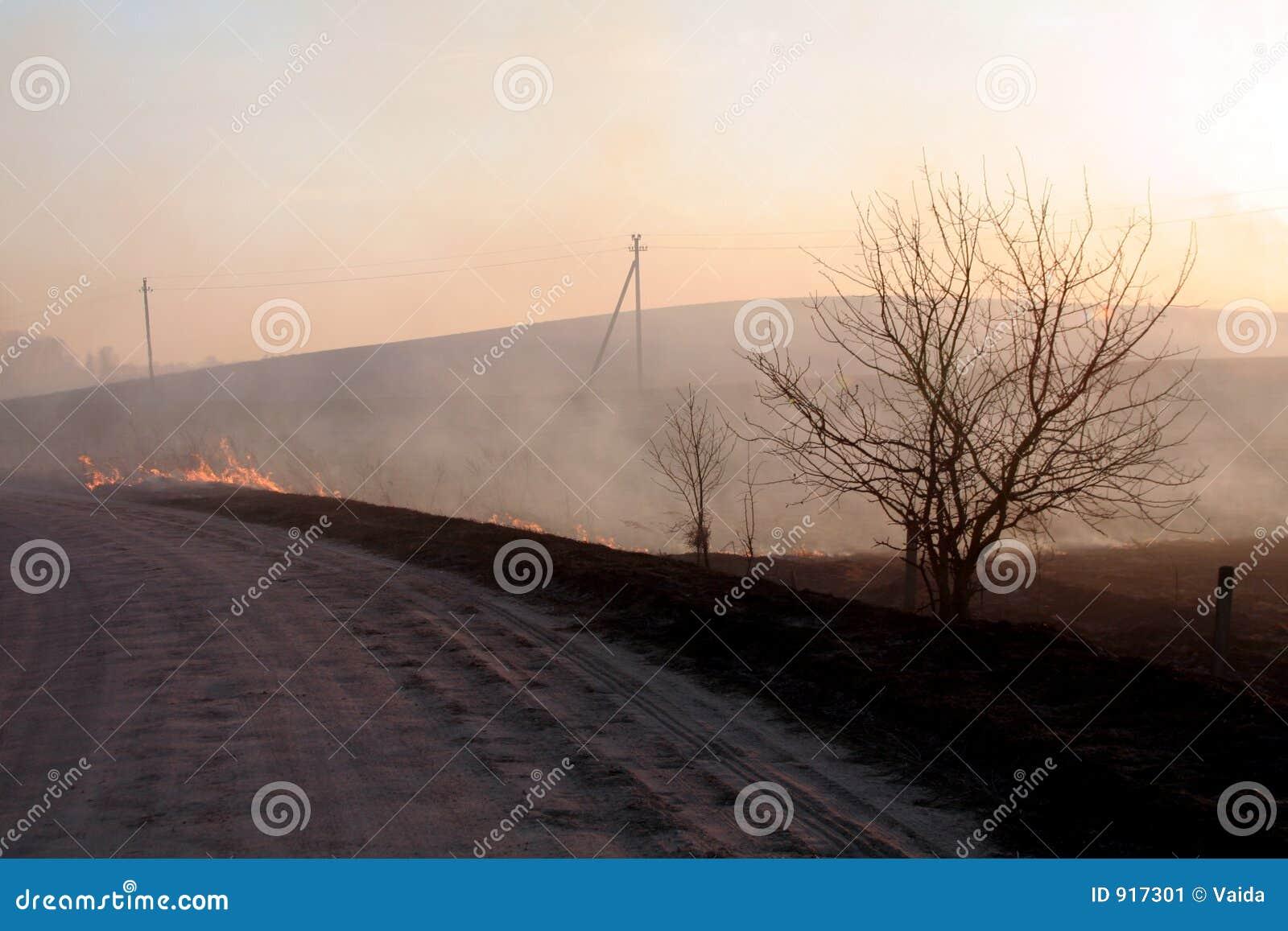 Brand op het gebied