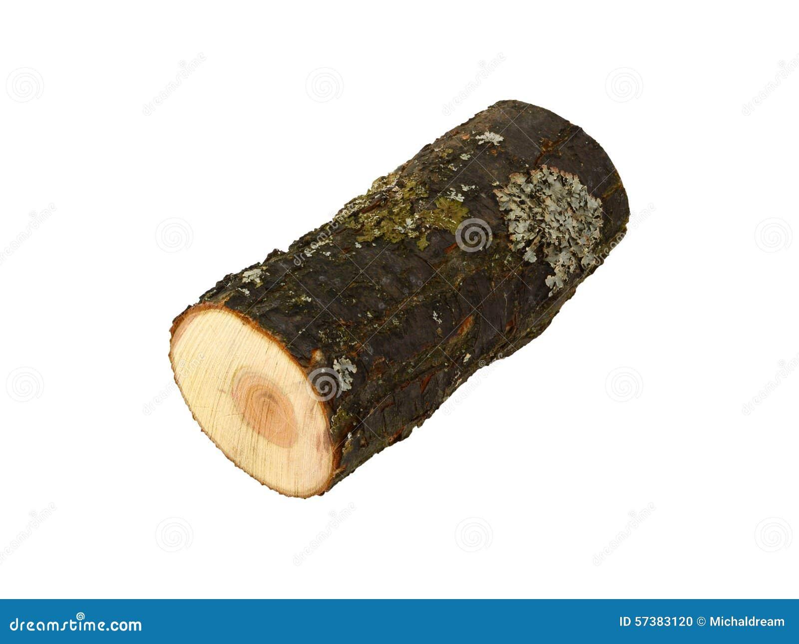 Brandhout met korstmos 6227