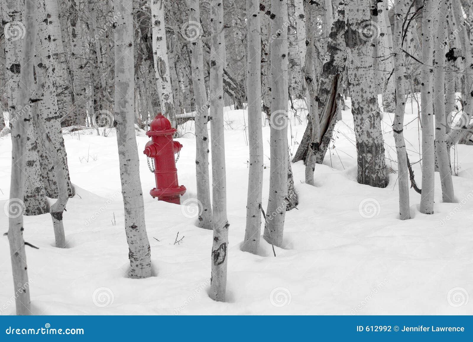 Brandkraan in Sneeuw