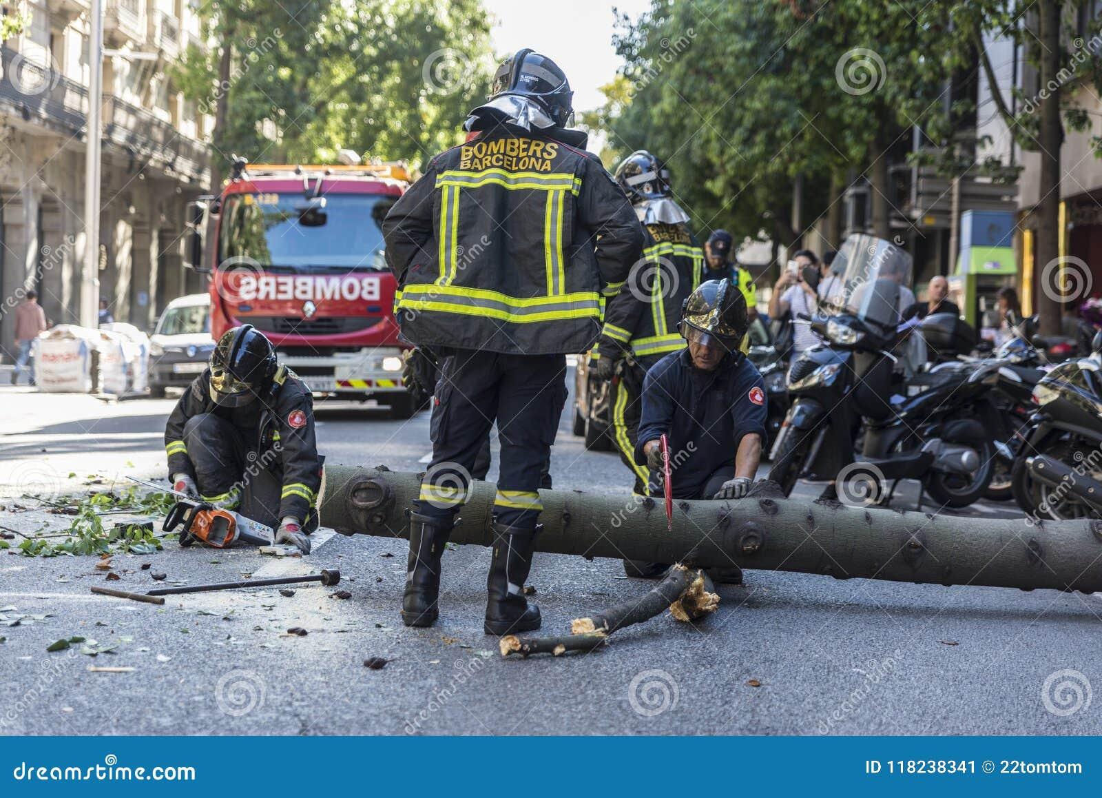 Brandmän som drar ett stupat träd i mitt av gatan