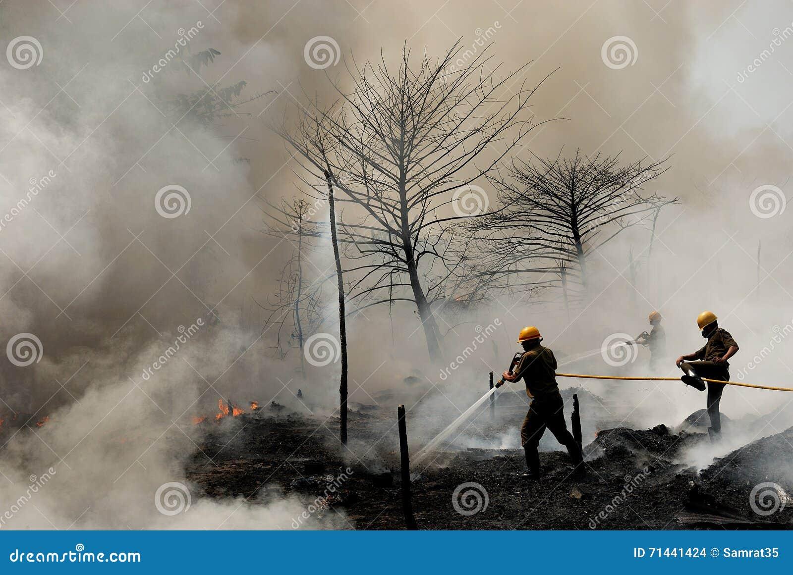 Brandweerlieden op het werk