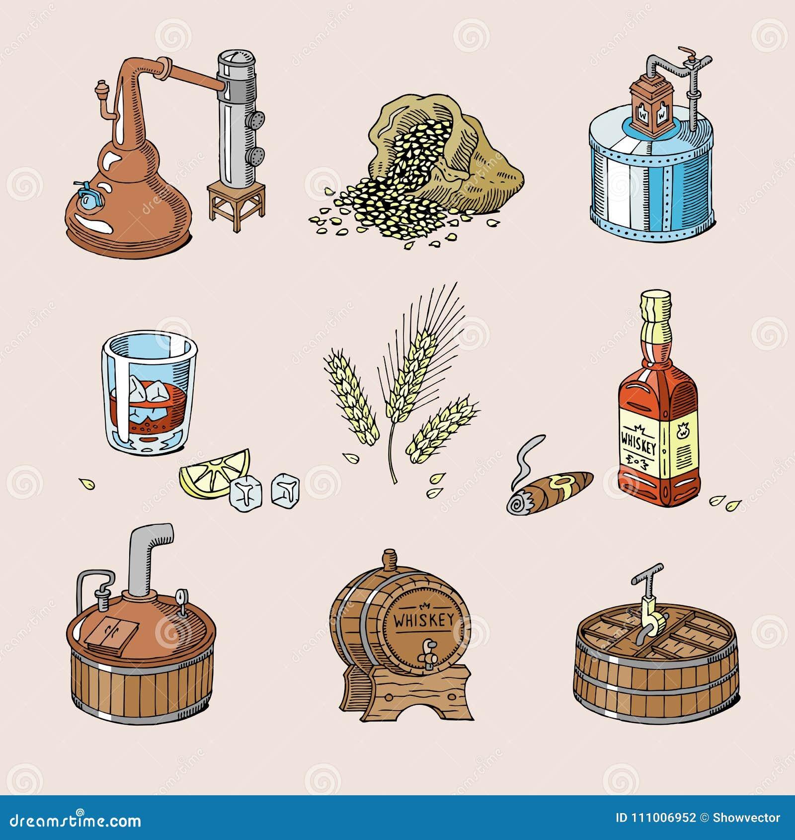 Brandy de la bebida del alcohol del vector del whisky en el vidrio y la bebida escoceses o borbón en el sistema del ejemplo de la