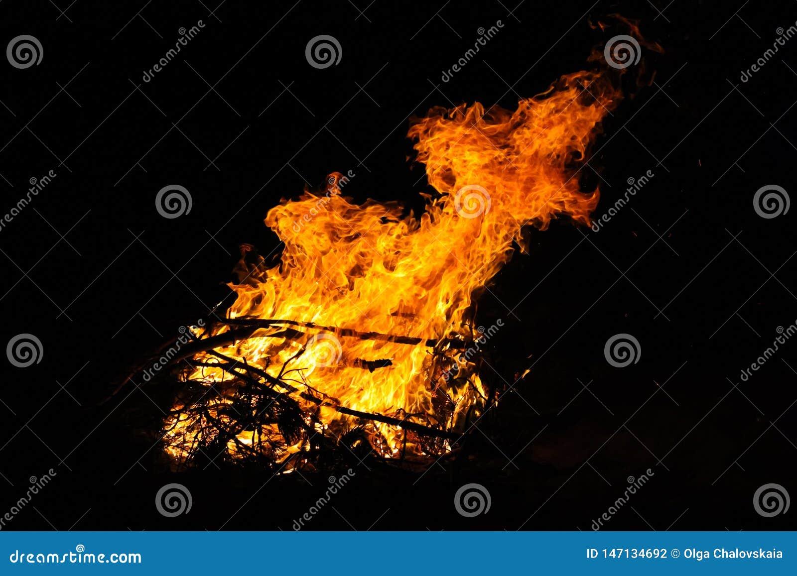 Brasa i det turist- l?gret p? natten R?da flammor p? en svart bakgrund Forest Fire