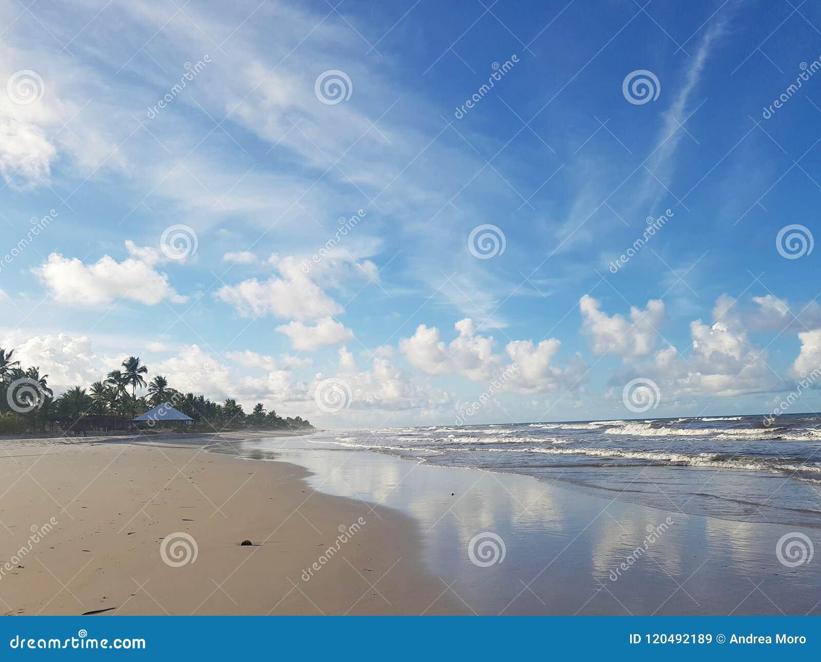 Brasiliana Spiaggia