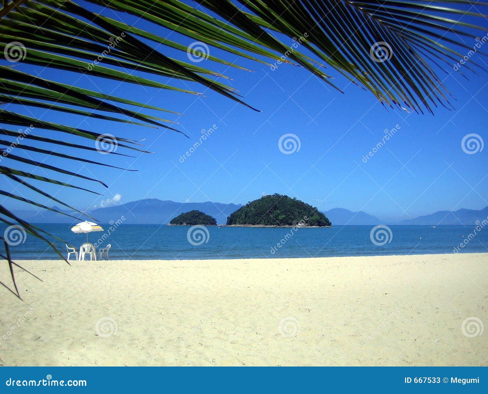 Brasiliansk stolsö för strand