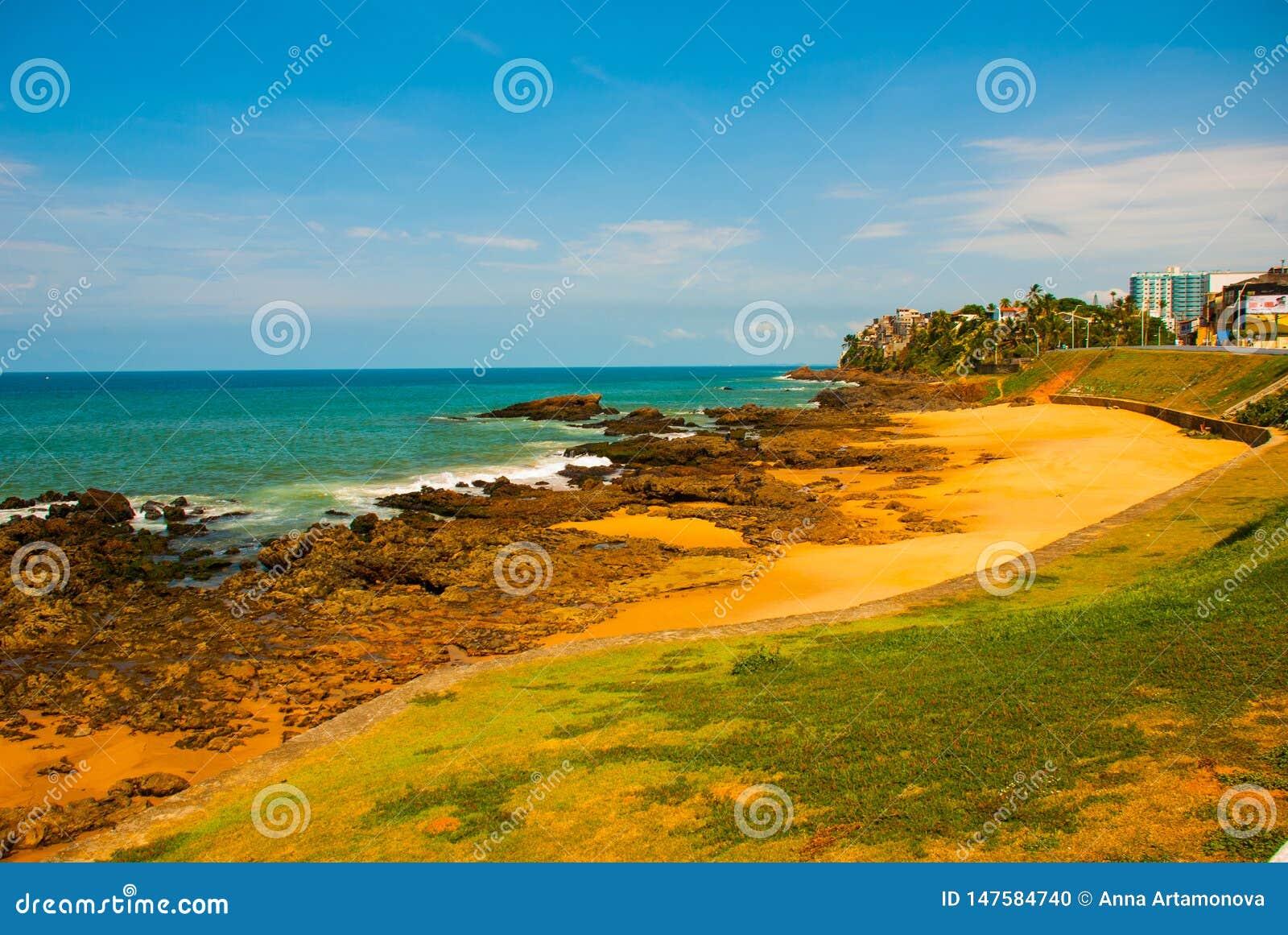 Brasiliansk strand med gul sand och bl?tt hav i soligt v?der _ Salvador h?rligt dimensionellt diagram illustration s?dra tre f?r