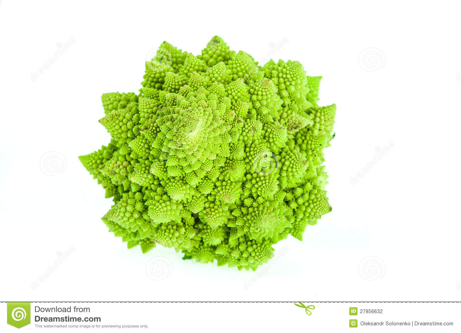 Brassica Oleracea, Romanesco brokuły/Romański kalafior