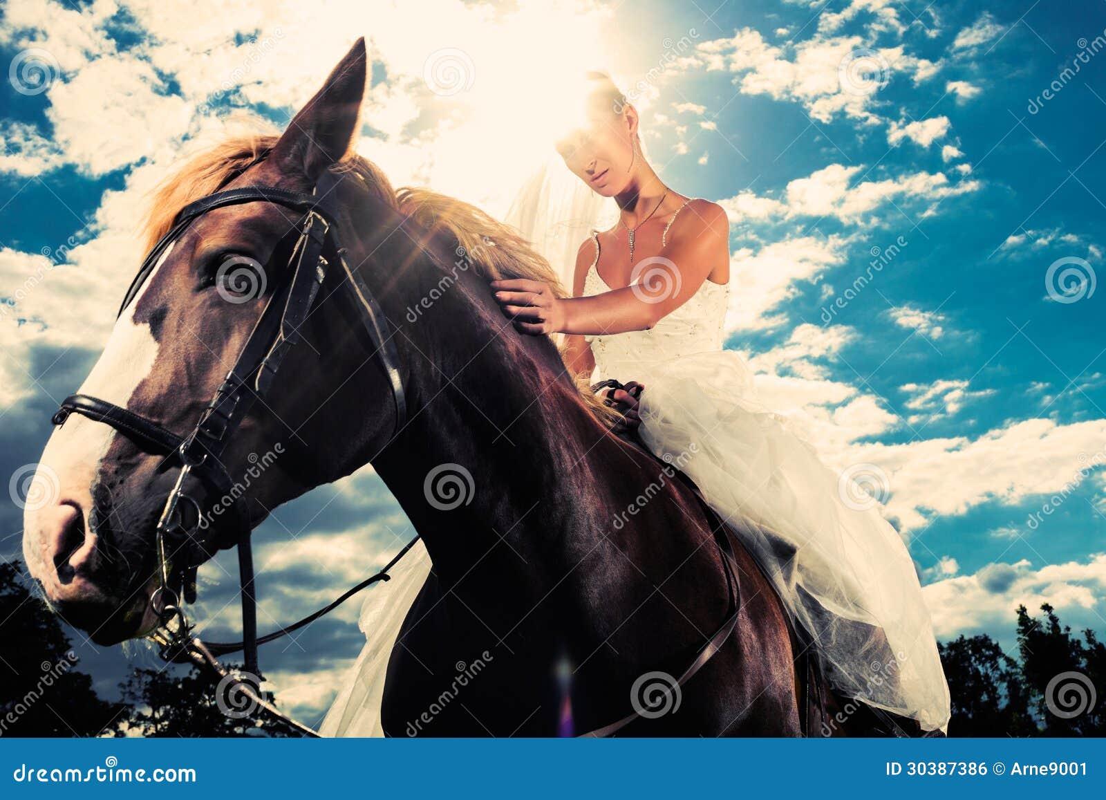 Junge Braut im Hochzeitskleid, das ein Pferd, hintergrundbeleuchtetes ...