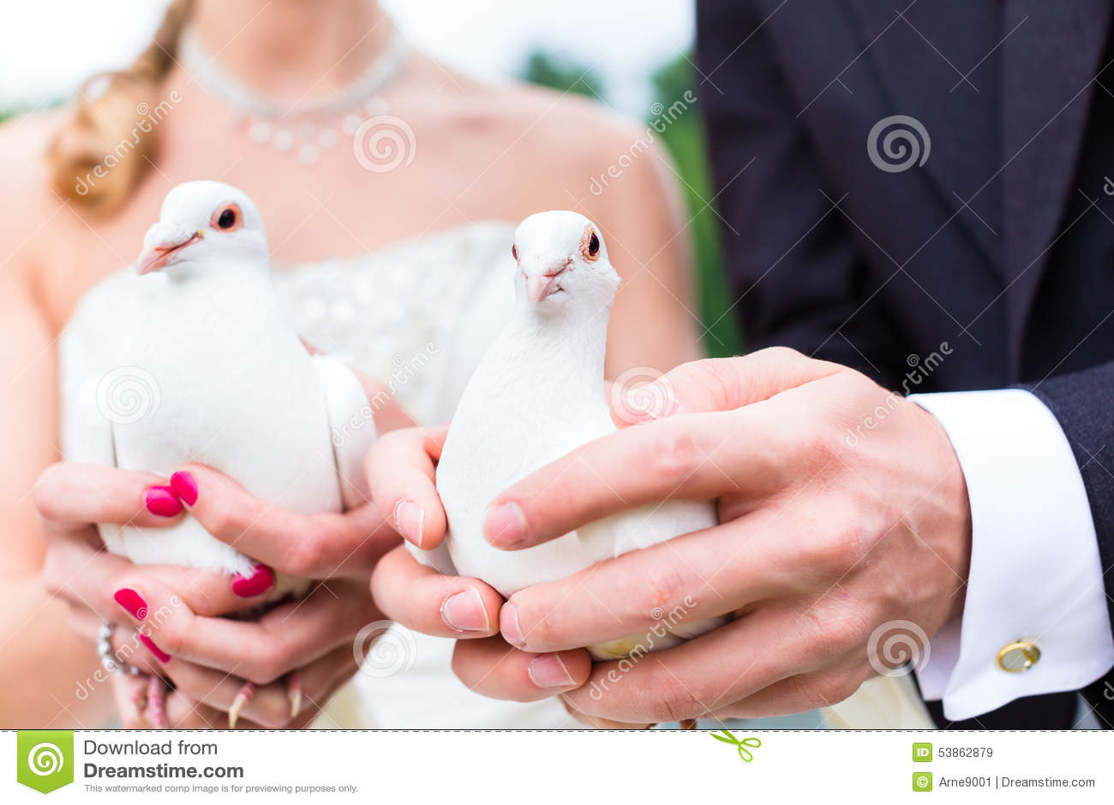 Brautpaare An Der Hochzeit Mit Tauben Stockbild - Bild von fliege ...
