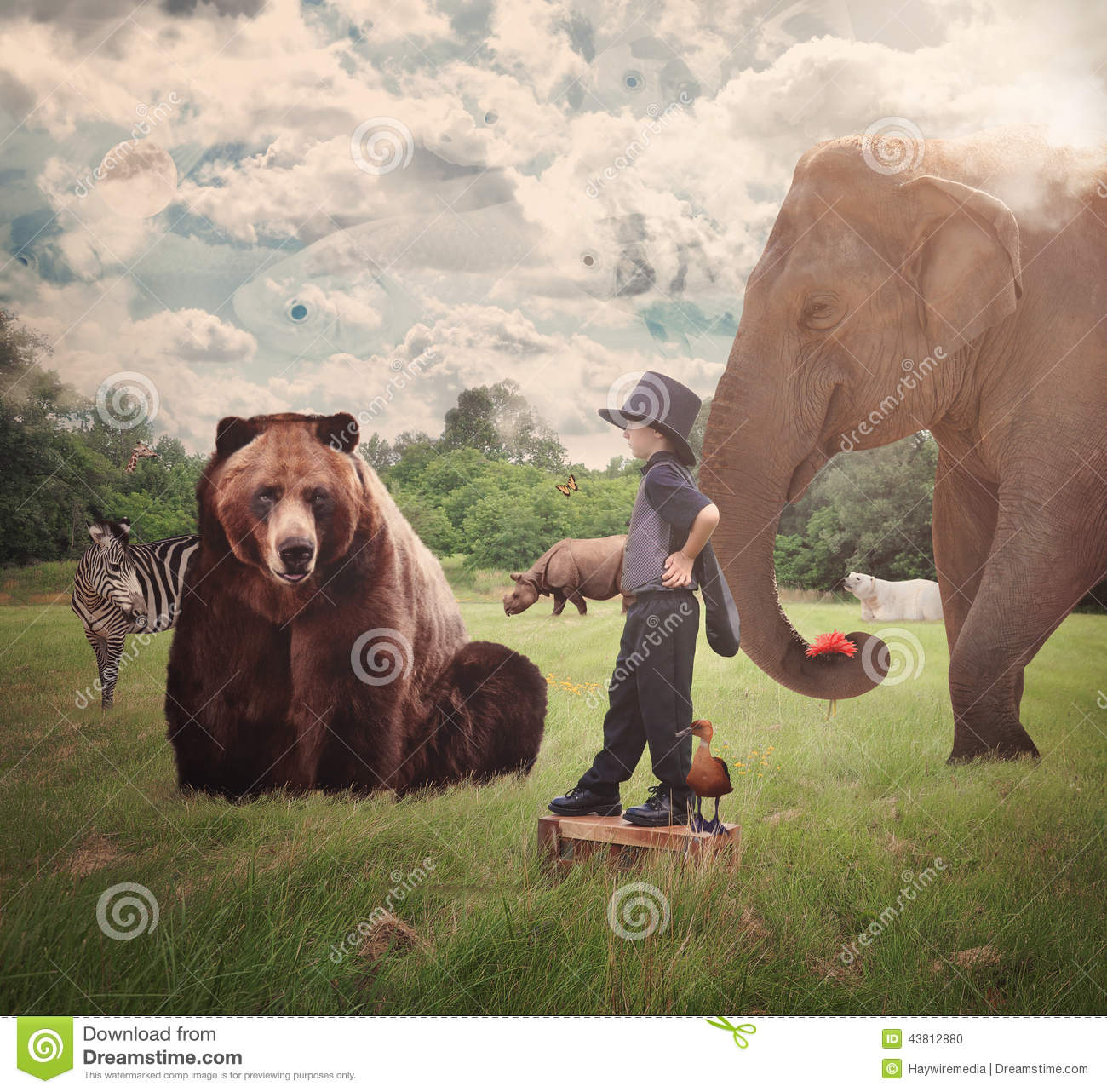 Brave Child In Field With Wild Animals Stock Photo - Image ...