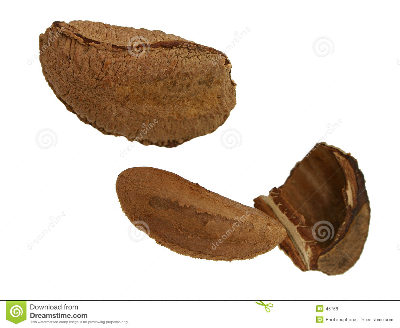 Brazil Nut In Shell Royalty Free Stock Photos - Image: 46768